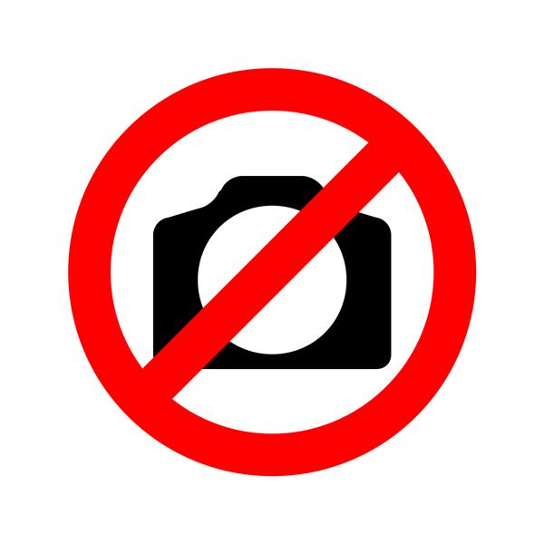 govinfo-icon